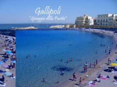 73 - Gallipoli-