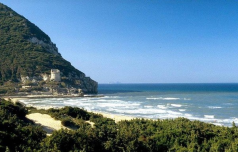 20 Le dune di Sabaudia