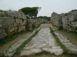 97 - Paestum Archeological