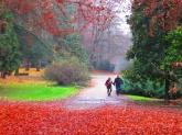 25 -Monza- 688 ettari di parco costituiscono a Monza uno tra i più grandi parchi storici europei, il quarto recintato più mura.