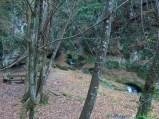 8- -Il fiume Alento nei pressi dell'abbazia di S. Liberatore , nel Parco Nazionale della Majella.