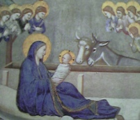 10 -Basilica di San Francesco-'interno-nativita