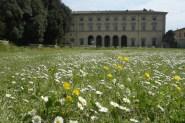 20 -Palazzo Vitelli a S. Egidio e Palazzina