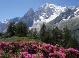 20 - Il Tour Dei Rifugi del Monte Bianco (TDR), è un'itinerario escursionistico in mountain bike. Si sviluppa tra mulattiere e sentieri di alta montagna