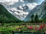 19 - A spasso per il Parco Nazionale Gran Paradiso. Valle d'Aosta -