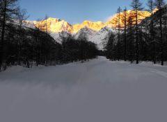 46 - Panorama - Monte Rosa