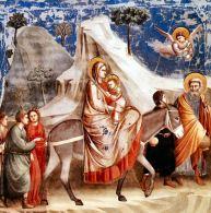 """154 - Napoli, Galleria Nazionale di Capodimonte. """"Fuga in Egitto"""", Giotto 1303-1306-"""