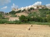2- Irsinia- Irsina è uno dei paesi più antichi della Basilicata, come testimoniano numerosi reperti archeologici risalenti ai periodi greco e romano. Dal Medioevo fino al 6 febbraio 1895 il nome del paese era Montepeloso.