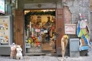 """69 - L'Ospedale delle Bambole, storica bottega artigianale a Spaccanapoli - L'idea geniale venne nel 1840 a Luigi Grassi, scenografo dei teatri di corte e dei teatrini dei pupi, lavorava in una stradina di """"Spaccanapoli"""". Fu una mamma a chiedergli di aggiustare una bambola rotta e da quel giorno l'ospedale non ha smesso di curare i suoi particolari """"malati"""". Il nome venne da una persona del popolo che passando da fuori disse in napoletano, """"sembra proprio l'ospedale delle bambole"""". Luigi Grassi prese allora una tavoletta di legno e ci scrisse """"OSPEDALE DELLE BAMBOLE"""" aggiungendo anche una croce rossa. Da 170 anni quella insegna è ancora lì."""