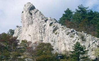83 - Crinale.Strato calcareo verticalizzato