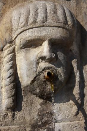 19 - Particolare della Fontana di San Marco di deCesare