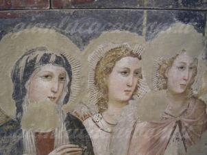 38- Rimini - interno museo-giudizio-universale-particolare-