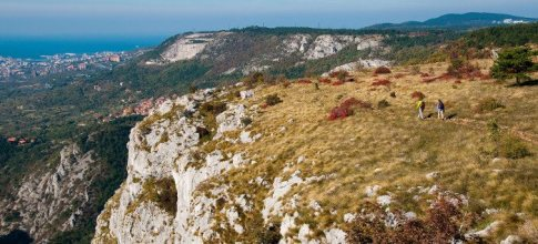 78 -Trieste. Carso. Riserva Naturale Val Rosandra