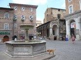 72 - Urbino. Fontana in Piazza della Repubblica