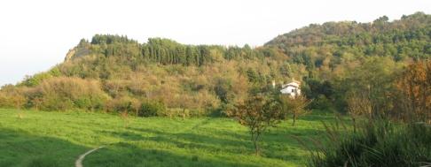 13 - Pesaro. Prati del Parco di San-Bartolo