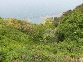 84 - Panorama del parco dal borgo di Fiorenzuola di Focara -