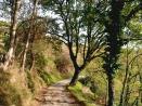23 - Parco Naturale del Monte San Bartolo. Sentiero1-Bocca-del-lupo-