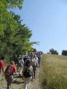 24 -Pesaro. camminata in uno dei percorsi del parco. Salita-Campo