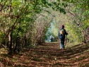 27 - Pesaro. camminata in uno dei percorsi del parco.