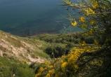 7 - Parco Naturale Monte San Bartolo, panorama