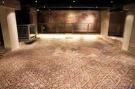 143 - La Domus dei tappeti di pietra
