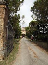 165- Forlì. Fornò Santuario di Santa Maria delle Grazie, viale versi l'ingresso.