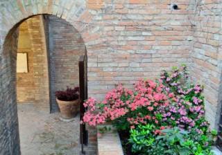 113 - Ravenna. Giardini pensili. fiori