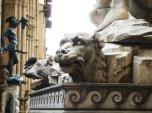 39 - Firenze. Piazza Signoria - Ercole e Caco, particolare il mastino.