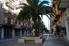 88 - -Bari_-_Via_Sparano_-_in_centro