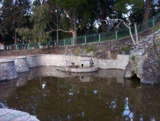 Foggia - Laghetto nella Villa Comunale