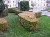 45 - Foggia - Piazza Italia
