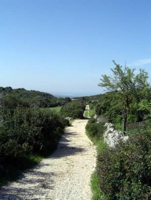 89 - Ostuni. Oltre il colle di S. Oronzo, percorrendo la Strada dei Colli fino a S. Oronzo, proseguire a piedi per circa 700 metri, si trova il santuario di S. Biagio in Rialbo, parte in muratura e parte scavato nella roccia.
