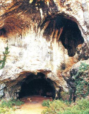 58 - Grotta_Santa_Croce_Bisceglie_La grotta di Santa Croce costituisce una particolare cavità sotterranea di origine carsica, di interesse archeologico, speleologico e turistico. Essa si apre a 113,0 m sopra il livello del mare sul fianco di levante dell'omonima lama situata nell'agro del comune di Bisceglie, in prossimità del primo rilievo meridionale della Murgia.