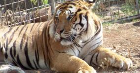 68 - Zoo Safari di Fasano