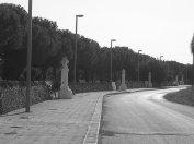 56 -Fasano. La Via delle Croci di km 1, che collega Pozzo Faceto a Pezze di Greco per la quale si percorre il pellegrinaggio nel mese di maggio