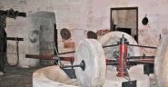 64 -Fasano Museo dell'Olio d'Oliva. Si trova all'interno dell' Abazzia di San Lorenzo. Dal 1798 la Masseria è di proprietà della famiglia Colucci-Amati, che nei locali dell'antico frantoio ha allestito un piccolo ma interessante Museo dell'olio d'oliva, con i macchinari, gli attrezzi e gli oggetti che raccontano la storia della produzione dell'olio in questa azienda che, con i suoi circa 60 ettari di uliveto, è da sempre legata a questa antica attività.