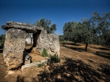 """60 -Fasano. Il Dolmen di Montalbano. Risale probabilmente alla prima Età del Bronzo, intorno al 2000-1500 a.C. Il dolmen di Montalbano rappresenta nella zona una delle prime testimonianze funebri. Conosciuto anche come """"Tavola dei paladini"""", è facilmente raggiungibile percorrendo la SS 16, in direzione mare, nel tratto Fasano-Ostuni in zona """"di Occhio Piccolo""""."""
