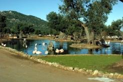 67 - Zoo Safari di Fasano