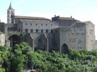 33 -Il Palazzo dei Papi di Viterbo visto dalla Valle di FAUL