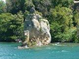 65 -Lago di Bolsena. L'isola Bisentina, particolare.