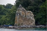 66 -Lago di Bolsena. L'isola Bisentina, dettaglio.