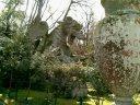47 -Bomarzo. Parco dei Mostri, drago con leoni.