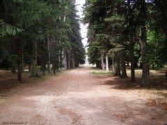73 -Caprarola. palazzo Farnese, giardini.