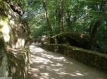 44 -Bomarzo. Parco dei Mostri, viale