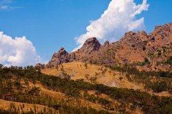 48 -Parco Nazionale dell' Aspromonte - Reggio Calabria