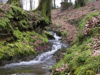 50 -Parco Nazionale dell'Aspromonte
