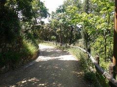 38 -Catanzaro. Il Parco della Biodiversità Mediterranea...