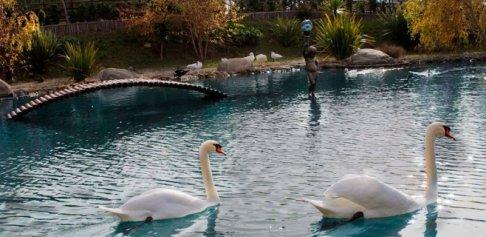 40 -Catanzaro. Il Parco della Biodiversità Mediterranea...
