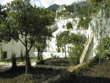 40 -Salerno. Il giardino della Minerva.