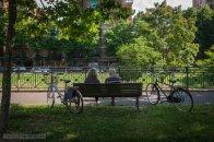 28 - Piacenza. Il Facsal è il pubblico passeggio di Piacenza che prende il nome dai giardini di Londra Vauxhall. E' il viale più famoso della città: lungo quasi due chilometri si trova alle porte del centro storico, in posizione di rilievo sulle mura rinascimentali. Ombreggiato da platani secolari, il viale ben si presta – e dai Piacentini è sfruttato - per passeggiate nel verde, giri in bicicletta e a momenti di relax sulle numerose panchine disseminate lungo il percorso. In alcuni momenti dell'anno ospita mercati, fiere e attività ludico/culturali per grandi e piccini. Non meno interessante è il nome: all'origine del popolare Facsal vi è il termine inglese Vauxhall che denominava i giardini istituiti a Londra nel 1661 sulla riva del Tamigi come luogo di divertimenti e svago, una moda diffusa ben presto in tutta Europa e rimasta con e dovute varianti anche a Piacenza.